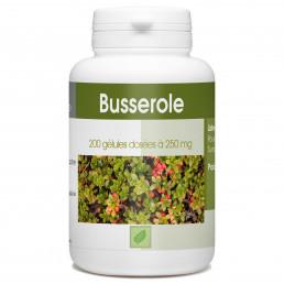 Busserole - 200 gélules à 250 mg