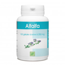 Alfalfa - 250 mg - 100 gélules