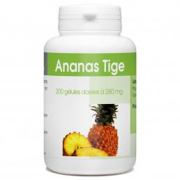Ananas Tige - 280mg - 200 gélules