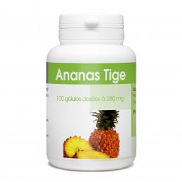 Ananas Tige - 280 mg - 100 gélules