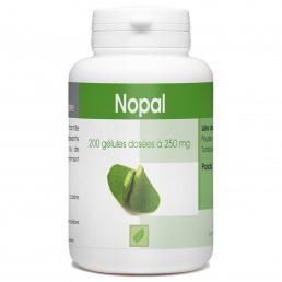 Nopal - 200 gelules classiques