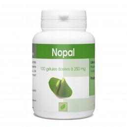 Nopal - 250 mg- 100 gélules