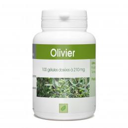 Olivier Feuille - 210 mg - 100 gélules