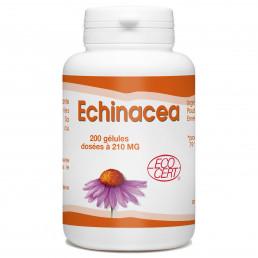 Echinacéa Bio- 200 gélules à 210 mg