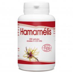 Hamamélis Bio - 220mg - 200 gélules