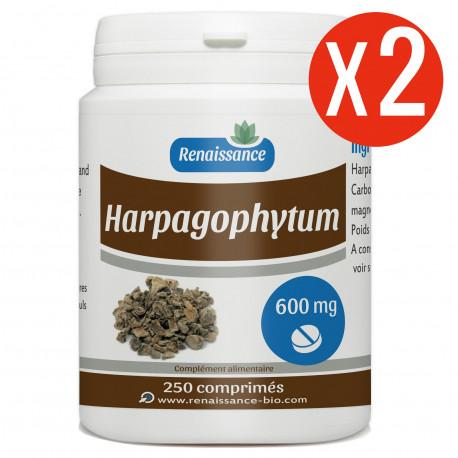 Harpagophytum 500 Comps 600MG