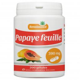 Papaye feuille - 200 gelules classiques
