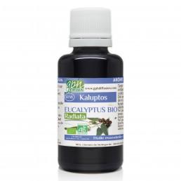 Huile Essentielle d'Eucalyptus Radiata Bio 30ml