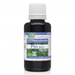Huile Essentielle de Pin Sylvestre Bio 30ml