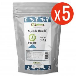 Myrtille feuille poudre 5 kg