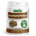 Harpagophytum 600 mg - 250 comprimés