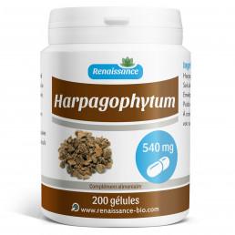 HARPAGOPHYTUM 200 gélules dosées à 540 mg