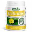 Tribulus Terrestris 500mg - 200 gélules
