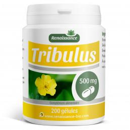 Tribulus - 200 gelules dosées 500 mg