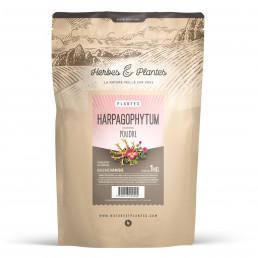 Harpagophytum Racine Poudre 1kg