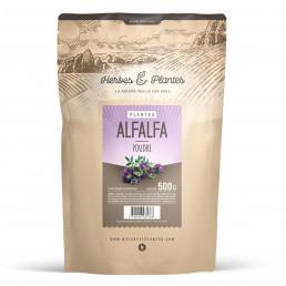 Alfalfa en poudre 500 g