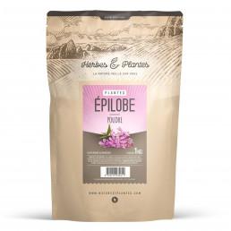 Epilobe - Poudre 1 kg